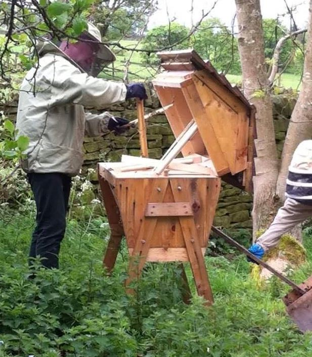 Gill and Iain encouraging a swarm into a top bar beehive