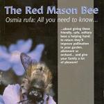 red mason bee book