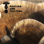 rooting and fruiting logo