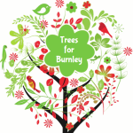 trees for burnley